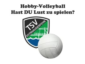 hobby-volleyball